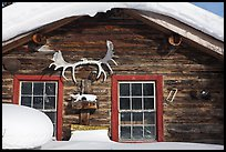 Log cabin facade with antlers. Wiseman, Alaska, USA ( color)