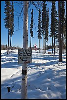 Surroundings of Santa Claus House in winter. North Pole, Alaska, USA ( color)