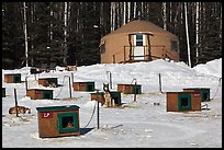 Doghouses and yurt tent. North Pole, Alaska, USA (color)