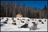 Sleds and kennel at mushing camp. North Pole, Alaska, USA (color)