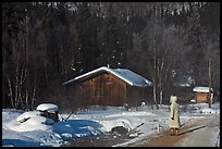Woman with winter coat walking on path to cabins. Chena Hot Springs, Alaska, USA ( color)