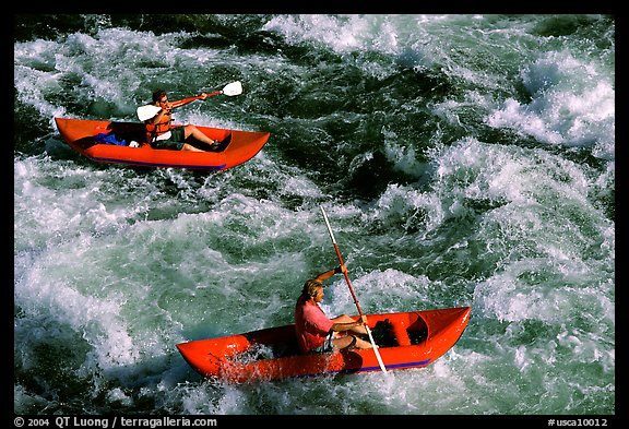 Kayakers on the rapids of the Trinity River, Shasta Trinity National Forest. California, USA
