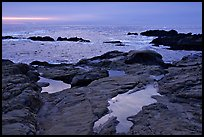 Tidepools, sunset, Weston Beach. Point Lobos State Preserve, California, USA (color)