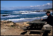 Man reading on a picnic table, Bean Hollow State Beach. San Mateo County, California, USA