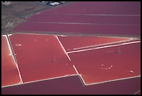 Aerial view of salt pond colorful patches. Redwood City,  California, USA ( color)