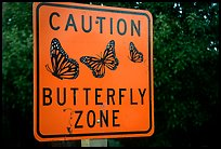 Monarch Butterfly sign. Pacific Grove, California, USA ( color)