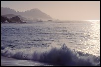 Surf on late afternoon. Carmel-by-the-Sea, California, USA ( color)