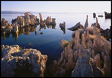 Tufa formations, South Tufa area, early morning. Mono Lake, California, USA (color)