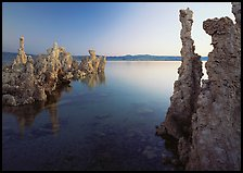 Tufa spires and Mono Lake at dusk. Mono Lake, California, USA ( color)