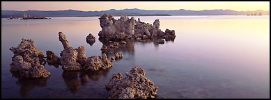 Lake sunrise with Tufa pinnacles. Mono Lake, California, USA (Panoramic color)
