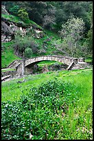 Stone bridge, Alum Rock Park. San Jose, California, USA (color)