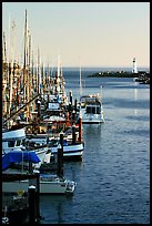 Harbor,  late afternoon. Santa Cruz, California, USA (color)