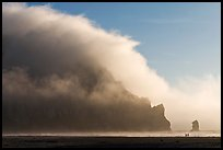 Morro Rock engulfed by afternoon fog. Morro Bay, USA
