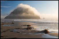 Beach with seaweed, and Morro Rock capped by afternoon fog. Morro Bay, USA (color)