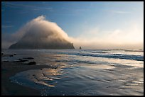 Morro Rock and fog reflected on beach. Morro Bay, USA (color)