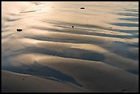 Ripples and wet sand on beach. Morro Bay, USA