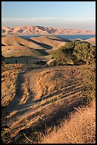 Golden hills and San Luis Reservoir. California, USA ( color)