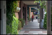 Shopping area of Santa Cruz avenue, the main downtown street. Menlo Park,  California, USA ( color)
