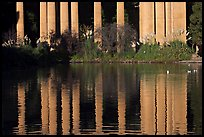 Reflection of colonade, Palace of Fine Arts, morning. San Francisco, California, USA ( color)