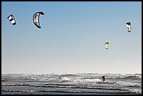 Multitude of kite surfing wings, afternoon. San Francisco, California, USA
