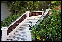 Stairs and garden, Nob Hill. San Francisco, California, USA ( color)