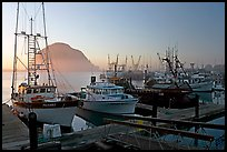 Harbor and Morro Rock, sunset. Morro Bay, USA ( color)