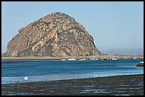 Yachts and Morro Rock. Morro Bay, USA (color)