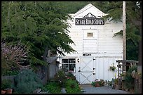White-facaded store tucked in trees, Pescadero. San Mateo County, California, USA (color)