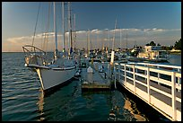 Yachts in Port of Redwood, late afternoon. Redwood City,  California, USA (color)