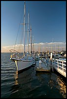 Yacht in Port of Redwood, late afternoon. Redwood City,  California, USA ( color)