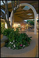 Flowers and arches, Stanford Shopping Mall, dusk. Stanford University, California, USA