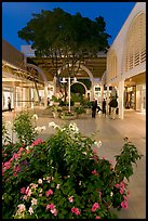 Vegetation and stores in main alley of Stanford Mall at night. Stanford University, California, USA