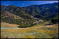 El Portal, nested below hills covered with spring flowers. El Portal, California, USA ( color)