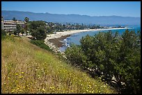 Hillside and waterfront. Santa Barbara, California, USA