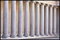 Row of columns, Legion of Honor, early morning, Lincoln Park. San Francisco, California, USA
