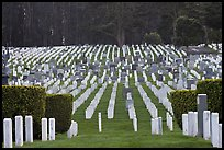 San Francisco National Cemetery, Presidio of San Francisco. San Francisco, California, USA ( color)