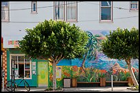 Store, trees and mural, Mission District. San Francisco, California, USA