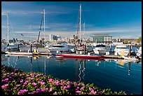 Alameda marina and Oakland skyline. Oakland, California, USA ( color)