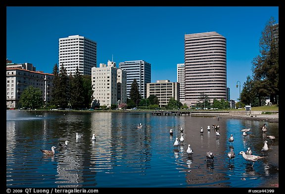 Lake Merritt, first US wildlife refuge, designated in 1870. Oakland, California, USA