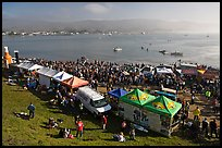 Pilar point during maverics surfing contest. Half Moon Bay, California, USA ( color)