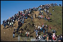 Crowds scrambling on hill during mavericks competition. Half Moon Bay, California, USA ( color)