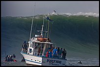 Judging boat with huge wave and surfer at crest. Half Moon Bay, California, USA ( color)