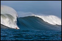 Surfing big wave at the Mavericks. Half Moon Bay, California, USA ( color)