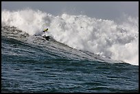 Surfer in Maverick wave. Half Moon Bay, California, USA ( color)