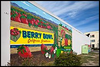 Wall with mural celebrating berry growing. Watsonville, California, USA ( color)