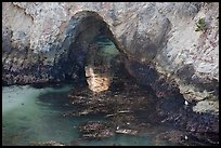 Sea arch, China Cove. Point Lobos State Preserve, California, USA (color)