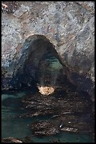 Sea arch and reflection. Point Lobos State Preserve, California, USA