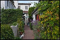 Alley. Carmel-by-the-Sea, California, USA (color)