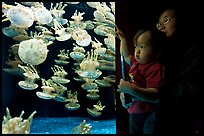 Mother and infant look at Jelly exhibit, Monterey Bay Aquarium. Monterey, California, USA