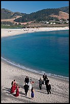 Wedding party on Carmel River Beach. Carmel-by-the-Sea, California, USA (color)